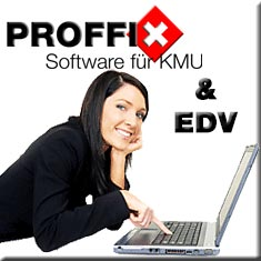 PROFFIX & EDV